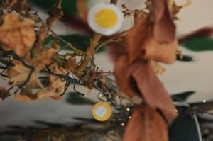 Albero della cuccagna per bambini - Premi con soldini di cioccolata
