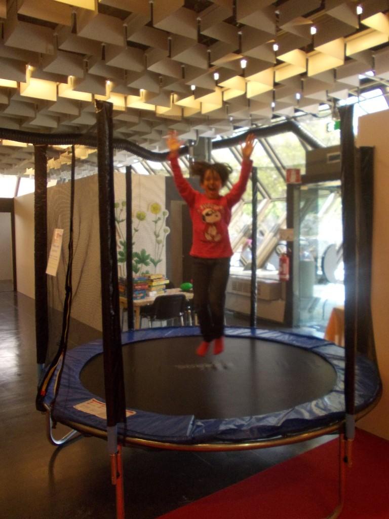 Tappeto Elastico Grande -  Un senso di euforia e di leggerezza, poteri da supereroe! Cosa sta succedendo? Ma certo è il nostro grande teppeto elastico! Emozioni da vendere!!!